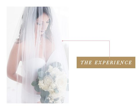 the experience is the most important part of your session with us